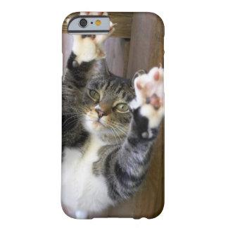Gato que estira, dentro funda para iPhone 6 barely there