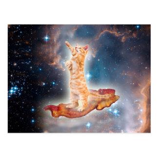 Gato que practica surf del tocino en el universo postal
