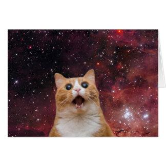 gato scaredy en espacio tarjeta pequeña