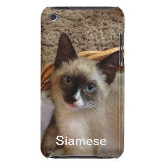 Gato siamés lindo iPod touch fundas