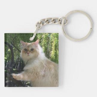 Gato siberiano del bosque (el doble echó a un llavero cuadrado acrílico a doble cara
