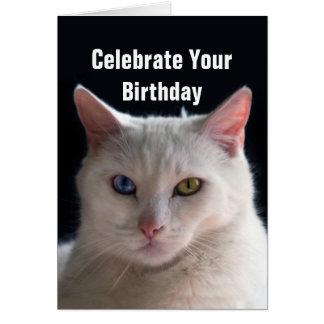 Gato turco del angora del feliz cumpleaños tarjeta de felicitación
