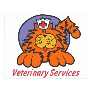 Gato veterinario postal