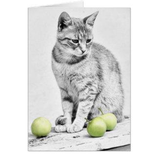 Gato y manzanas tarjeta de felicitación