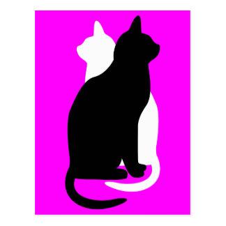 gatos blancos y negros del gatito del color de la postal