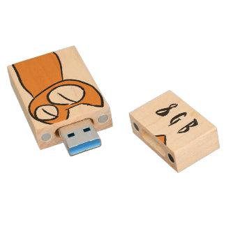 Gatos coloridos de la porción el mirar fijamente memoria USB de madera