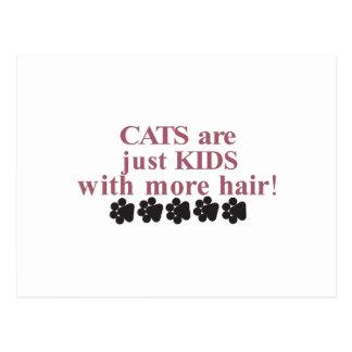 Gatos con más pelo postal