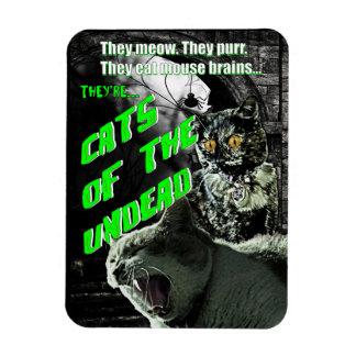 Gatos del imán de los Undead