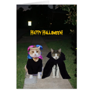 Gatos divertidos Halloween Tarjeta