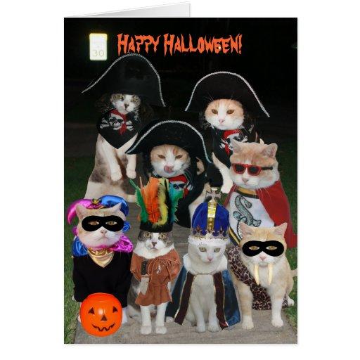 Gatos divertidos que rondan el Halloween Felicitaciones