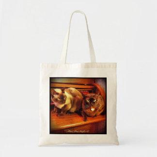Gatos en un escritorio del roble del top de rollo, bolsa de mano