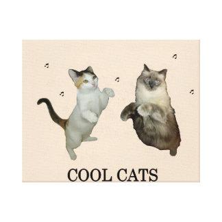 Gatos frescos impresion de lienzo
