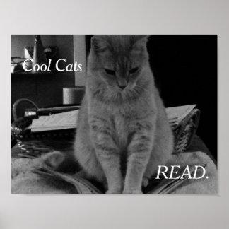 Gatos frescos leídos póster