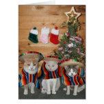 Gatos/gatitos divertidos Feliz Navidad Tarjeta De Felicitación