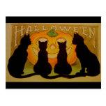 Gatos negros y Jack O'Lantern de Halloween del vin Postales