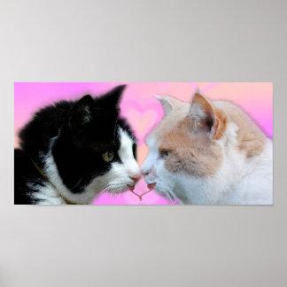 Gatos pareja de enamorados poster