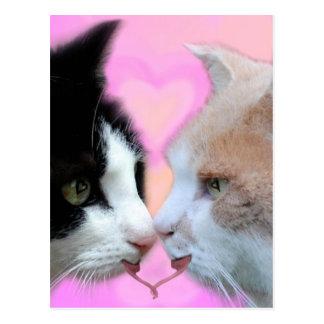 Gatos pareja de enamorados tarjetas postales