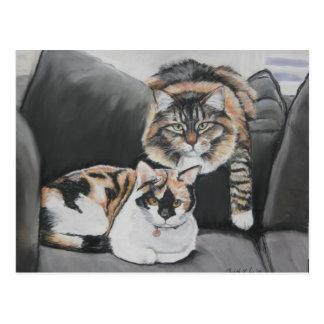 Gatos que cuelgan hacia fuera la postal del arte