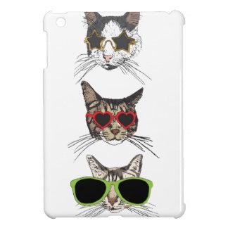 Gatos que llevan las gafas de sol