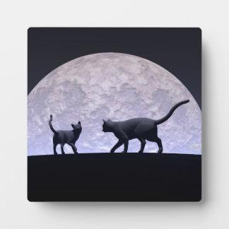 Gatos románticos placa expositora