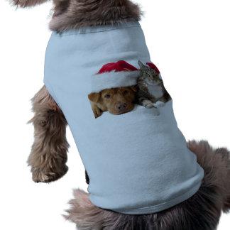 Gatos y perros - gato del navidad - perro del