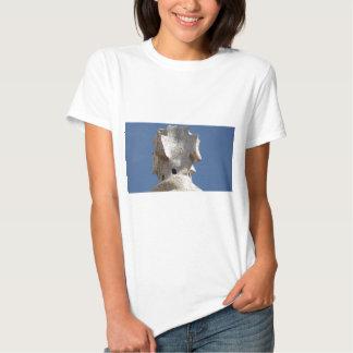 gaudi camisetas