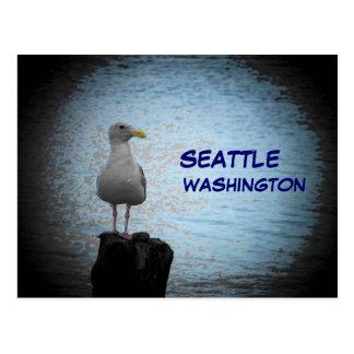 Gaviota de Seattle Postal