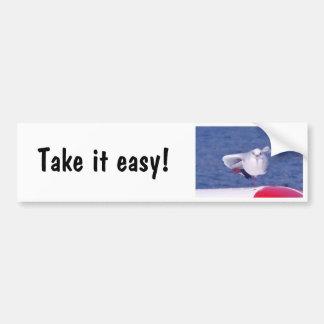 Gaviota divertida - pegatina para el parachoques pegatina para coche