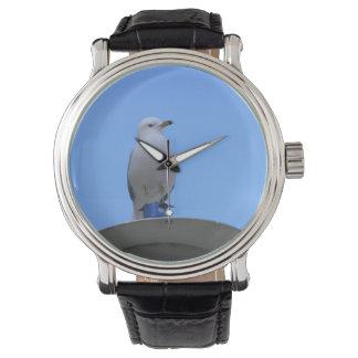 Gaviota - reloj