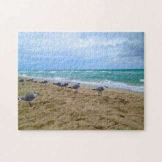 Gaviotas en el rompecabezas de la playa