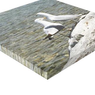 Gaviotas en una roca por el lago Michigan Lienzo