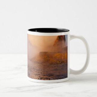 Géiser de la mosca en el desierto negro de la roca taza de café de dos colores