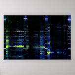 Gel 1 de la secuencia de la DNA Poster