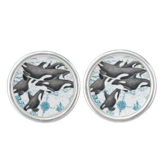 Gemelos Azul antiguo de la familia de las ballenas de la