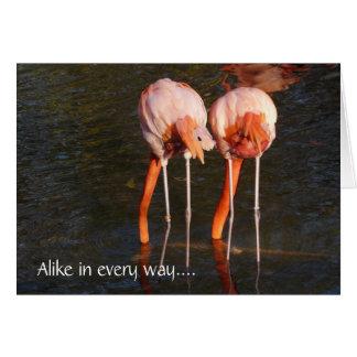 ¡Gemelos del feliz cumpleaños! - Flamencos rosados Tarjeta