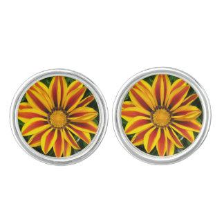 Gemelos Foto anaranjada hermosa de la flor de Sun