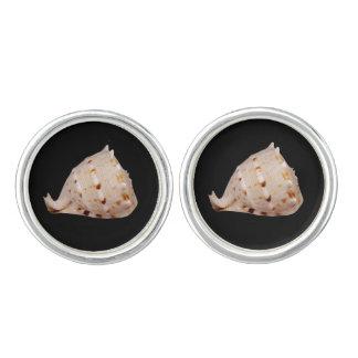 Gemelos Mancuernas plateadas plata de Shell de la concha