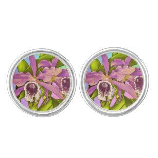 Gemelos Orquídeas rosadas coloridas