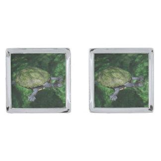 Gemelos Plateados Mancuernas de la tortuga verde