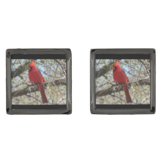 Gemelos Plomizos Cardinal