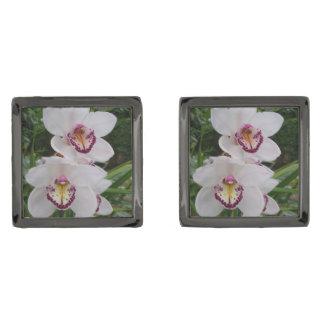 Gemelos Plomizos Flores tropicales hermosas de las orquídeas