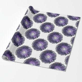 Gerbera púrpura de la lluvia papel de regalo
