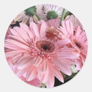 gerberas rosados pegatina redonda