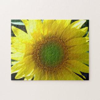 Girasol amarillo brillante puzzle