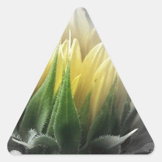 Girasol bonito pegatina triangular