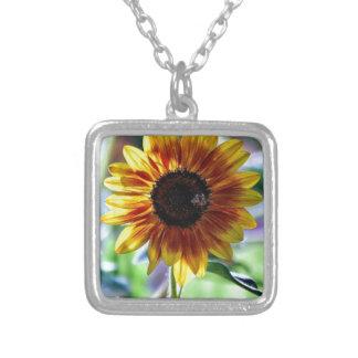 Girasol brillante - fotografía floral collar plateado