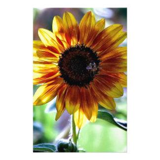 Girasol brillante - fotografía floral  papeleria de diseño