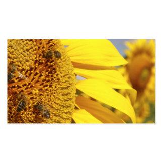 Girasol con las abejas de la miel tarjetas de visita