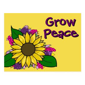 Girasol - crezca la postal de la paz
