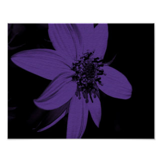 Girasol púrpura abstracto floral poster